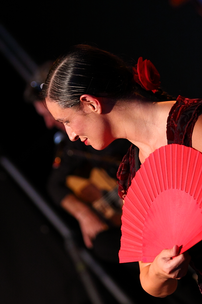Albadulake Flamenco dancer at the 2010 Longueuil International Percussions Festival