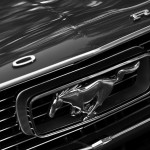 ford mustang front grill pony