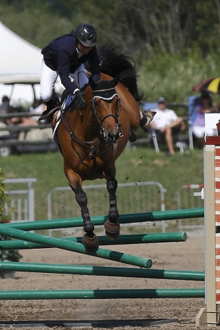 equestrian horse and rider falling