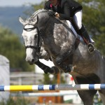 equestrian grey horse and rider jumping